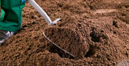 Quality Topsoil Supplier